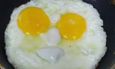 eggs-683597_1280